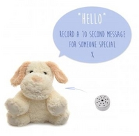 recordable teddy bear
